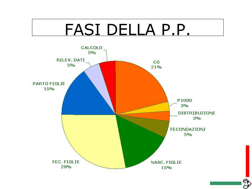 PROGRAMMA DI SELEZIONE RAZZA BRUNA IN ITALIA PROVE DI PROGENIE CENTRO GENETICO PERFORMANCE TEST VALUTAZIONI GENETICHE TORI NON AUTORIZZATI TORI AUTORI