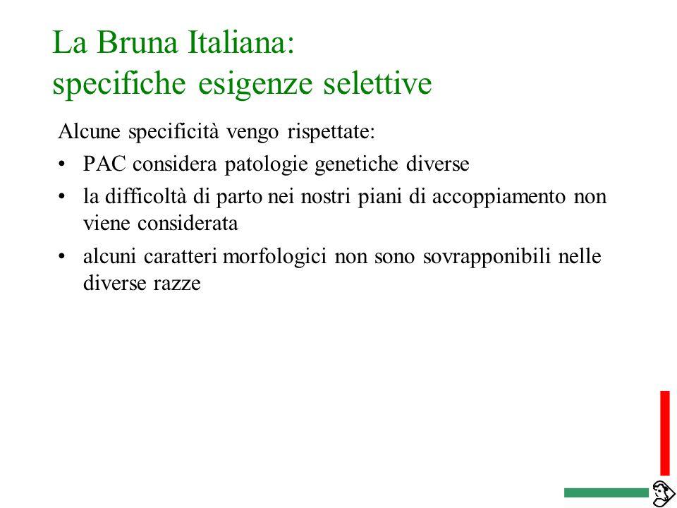 La Bruna Italiana: specifiche esigenze selettive i dati che entrano nella produzione dei servizi vengono stimati in maniera differente alcuni obiettiv