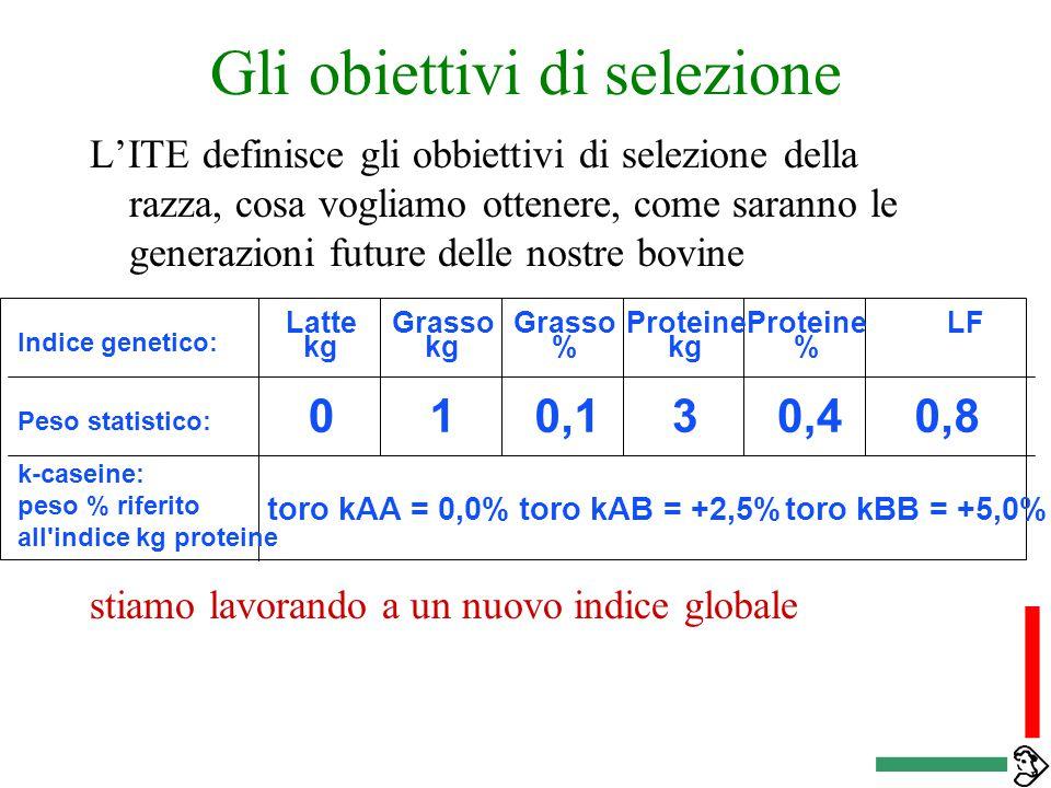 Gli obiettivi di selezione L'ITE definisce gli obbiettivi di selezione della razza, cosa vogliamo ottenere, come saranno le generazioni future delle nostre bovine stiamo lavorando a un nuovo indice globale Indice genetico: Peso statistico: k-caseine: peso % riferito all indice kg proteine Latte kg Proteine % LFGrasso kg Grasso % Proteine kg 010,130,40,8 toro kAA = 0,0%toro kAB = +2,5%toro kBB = +5,0%