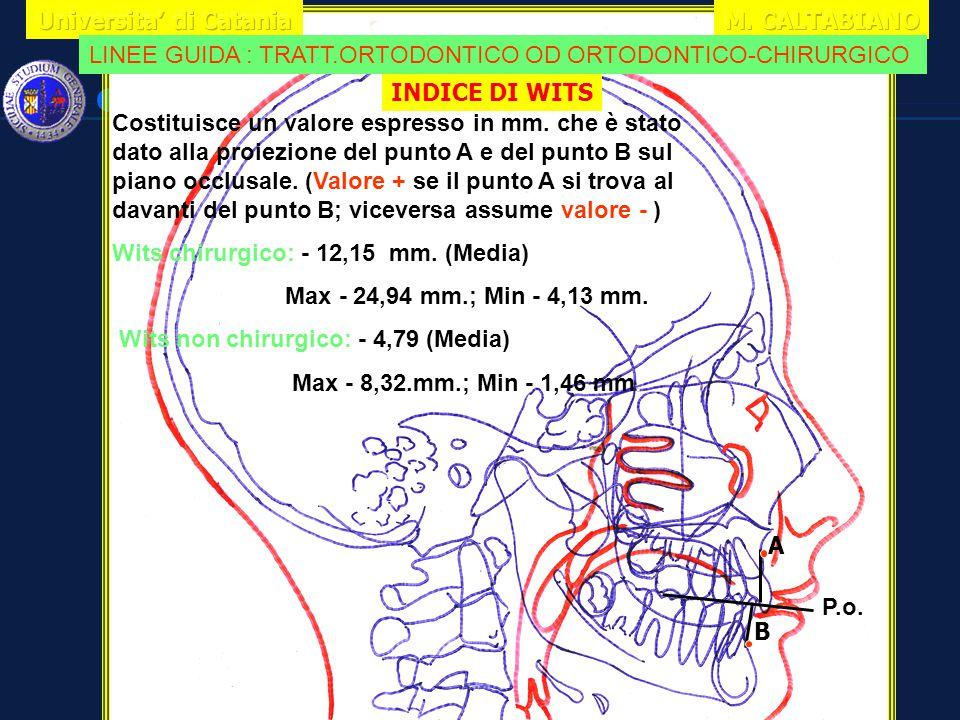 INDICE DI WITS A B P.o. Costituisce un valore espresso in mm. che è stato dato alla proiezione del punto A e del punto B sul piano occlusale. (Valore