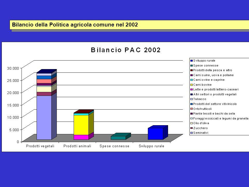 Bilancio della Politica agricola comune nel 2002