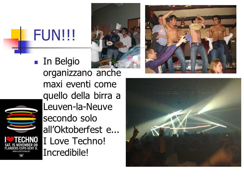 FUN!!! In Belgio organizzano anche maxi eventi come quello della birra a Leuven-la-Neuve secondo solo all'Oktoberfest e... I Love Techno! Incredibile!