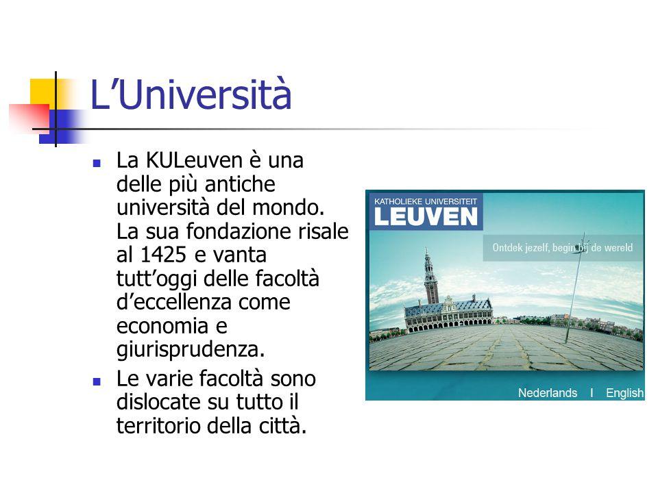 L'Università La KULeuven è una delle più antiche università del mondo. La sua fondazione risale al 1425 e vanta tutt'oggi delle facoltà d'eccellenza c