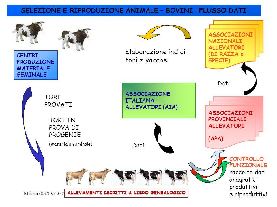 Milano 09/09/200337 CENTRI PRODUZIONE MATERIALE SEMINALE TORI PROVATI TORI IN PROVA DI PROGENIE (materiale seminale) ASSOCIAZIONE ITALIANA ALLEVATORI
