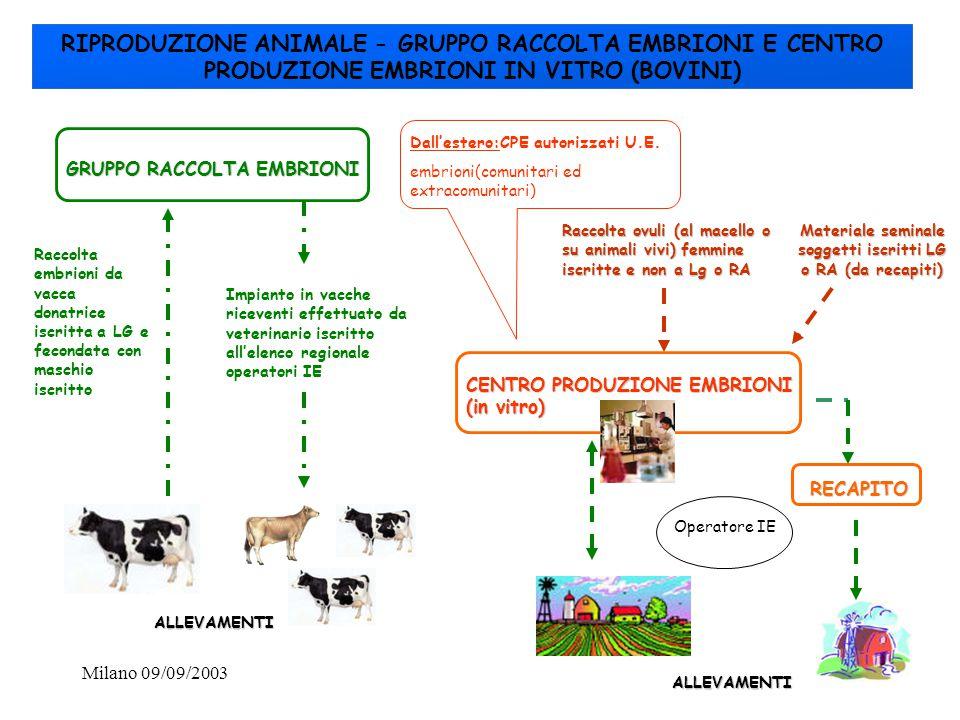Milano 09/09/200338 RIPRODUZIONE ANIMALE - GRUPPO RACCOLTA EMBRIONI E CENTRO PRODUZIONE EMBRIONI IN VITRO (BOVINI) GRUPPO RACCOLTA EMBRIONI CENTRO PRO