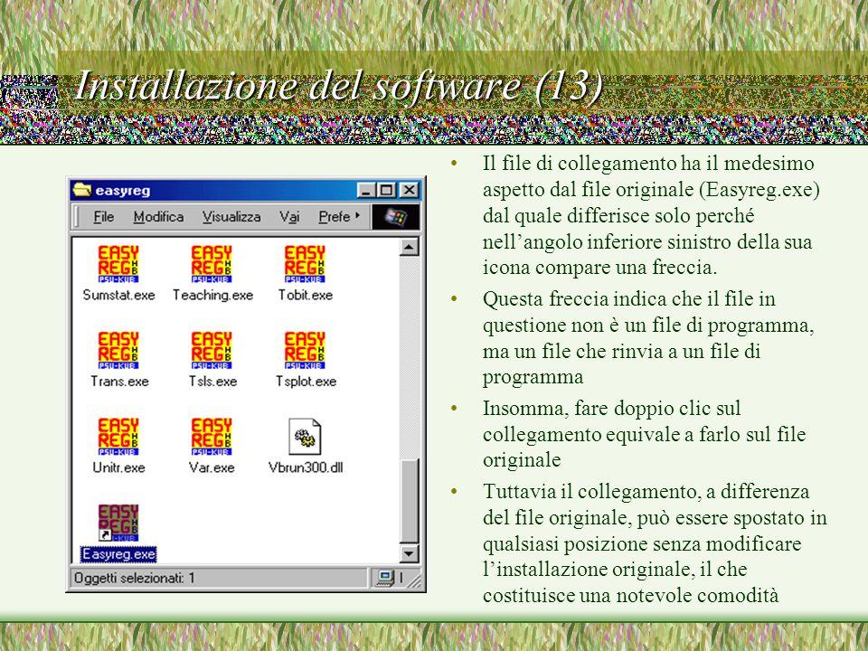 Installazione del software (13) Il file di collegamento ha il medesimo aspetto dal file originale (Easyreg.exe) dal quale differisce solo perché nell'angolo inferiore sinistro della sua icona compare una freccia.