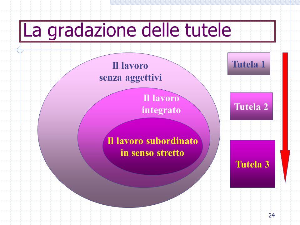 24 La gradazione delle tutele Il lavoro subordinato in senso stretto Il lavoro senza aggettivi Il lavoro integrato Tutela 1 Tutela 2 Tutela 3