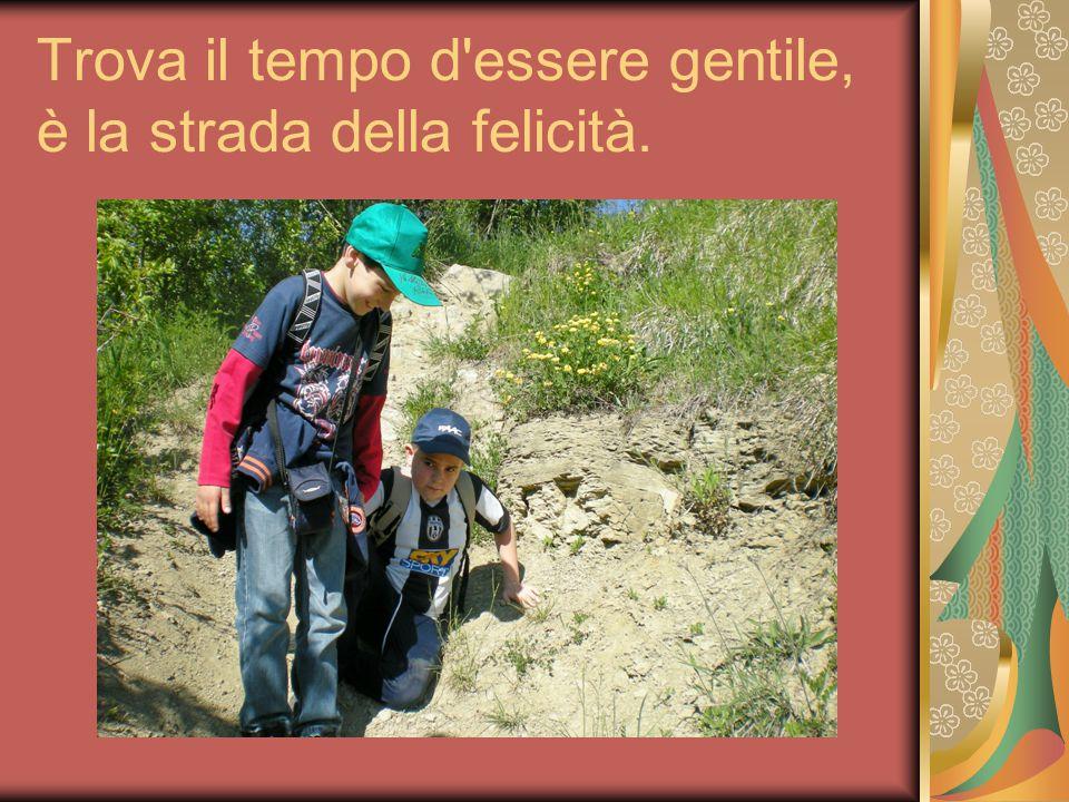Trova il tempo d'essere gentile, è la strada della felicità.