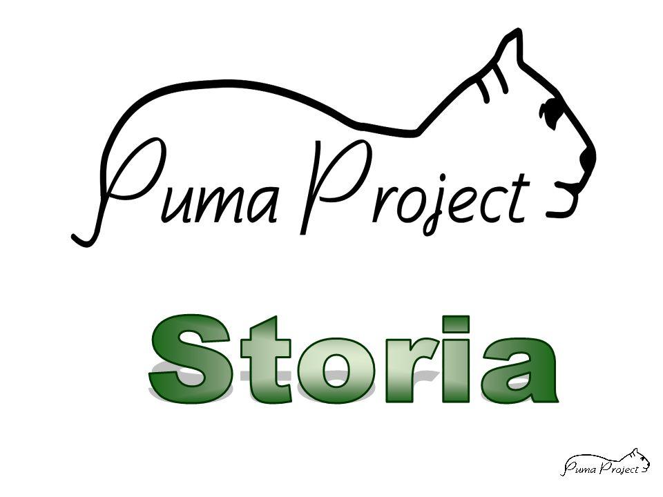 E' la naturale evoluzione di RADAMES per inserire i dati ed inviarli verso Puma-DB Esiste una versione per Palmare PSION ADA p ed una versione per PC portatile ADA w Utilizza Puma-PAI per dialogare con Puma- DB