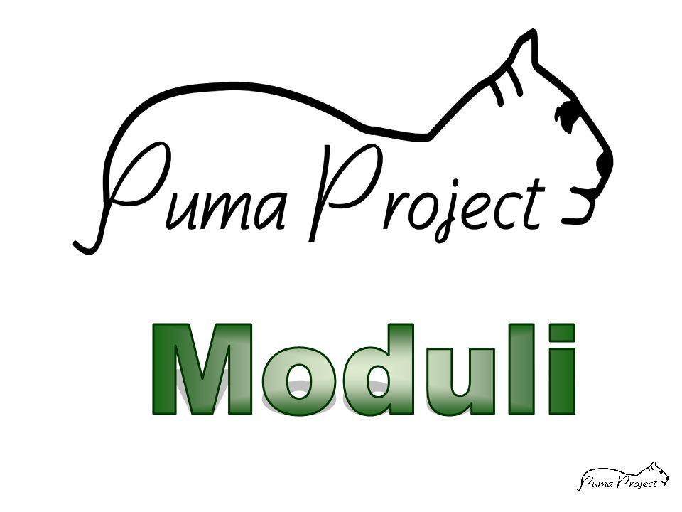 Il contenuto della Base Dati di Puma è stato definito dal gruppo di lavoro AIA-ARA- APA coordinato da ARA Lombardia che ha generato un'analisi del dom