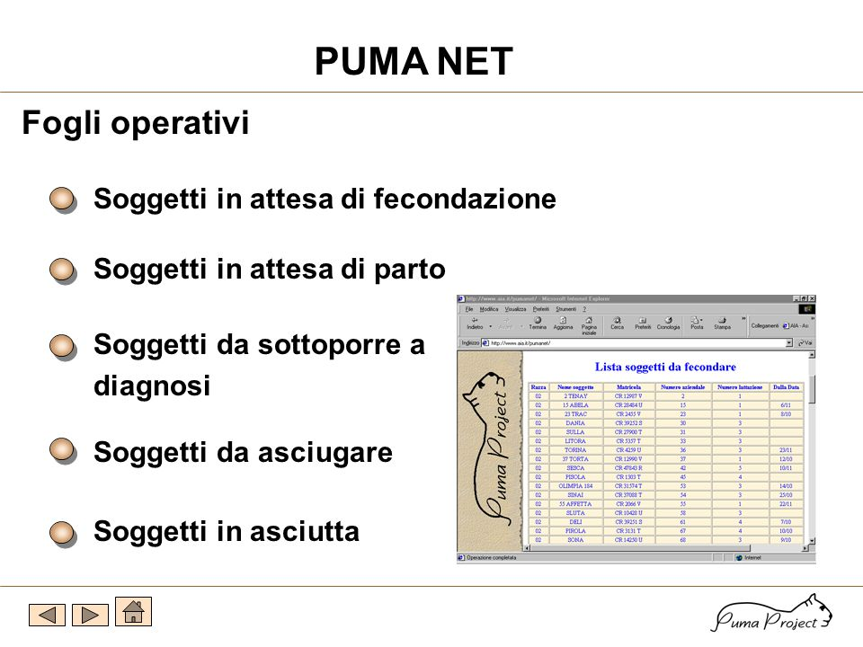 Prestampati O v i n i B o v i n i C a p r i n i B u f a l i Flusso operativo a partire dal 13/10/2000 15.000 2.000 320 260 PUMA NET
