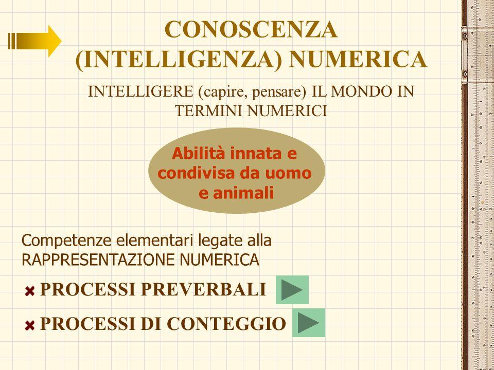 NUMEROSITÁ (CARDINALITÁ) Il numero di elementi che costituisce un insieme DISCRIMINARE IL NUMERO DI OGGETTI DI INSIEMI PRESENTATI VISIVAMENTE dalla nascita Il neonato non sa determinare il numero di elementi di un insieme percepisce come differenti insiemi con numerosità distinte distingue i cambiamenti di numerosità provocati dall'aggiunta/sottrazione di oggetti (possiede aspettative aritmetiche) MA SUBITIZING Processo specializzato di percezione visiva che consente di determinare la numerosità di un insieme visivo di oggetti (fino ad un massimo di circa 4) in modo immediato, senza contare COME?