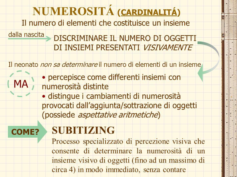 MODULO NUMERICO (Butterworth, 1999) CIRCUITI CEREBRALI SPECIALIZZATI PER CATEGORIZZARE IL MONDO IN TERMINI DI NUMEROSITÁ (piccoli insiemi di oggetti, fino a 4-5 elementi) abilità matematiche di base (RAPPRESENTARE LA NUMEROSITÁ) geneticamente codificate e presenti fin dalla nascita: non è necessario apprenderle DIFFERENZE INDIVIDUALI Capacità più avanzate riconducibili all'istruzione: STRUMENTI CONCETTUALI FORNITI DALLA CULTURA DI APPARTENENZA - 1, 2, 3… - uno, due, tre… COMPETENZE LINGUISTICO- SIMBOLICHE