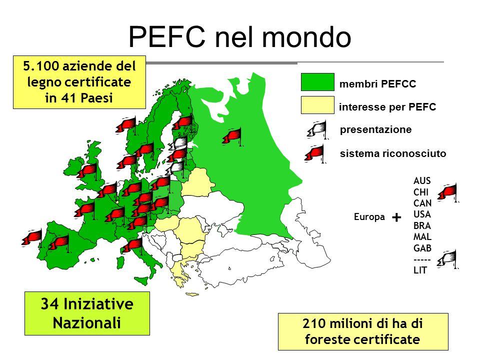 PEFC nel mondo interesse per PEFC membri PEFCC presentazione sistema riconosciuto AUS CHI CAN USA BRA MAL GAB ----- LIT + Europa 34 Iniziative Naziona