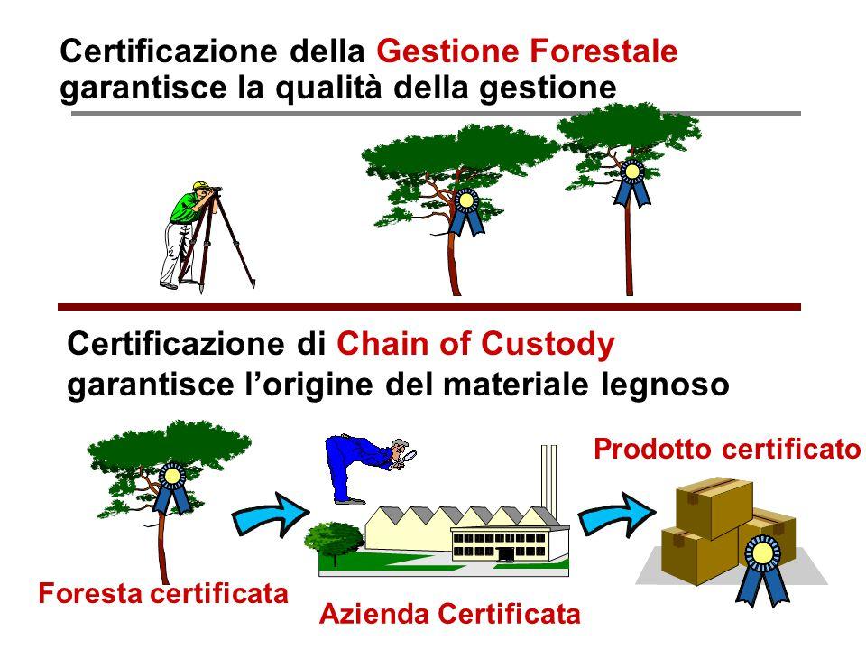Paolo Fabbri paolo@punto3.info Certificazione della Gestione Forestale garantisce la qualità della gestione Certificazione di Chain of Custody garanti