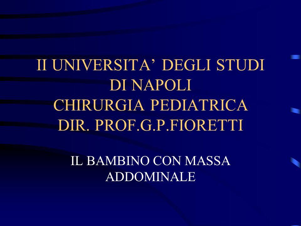 II UNIVERSITA' DEGLI STUDI DI NAPOLI CHIRURGIA PEDIATRICA DIR. PROF.G.P.FIORETTI IL BAMBINO CON MASSA ADDOMINALE