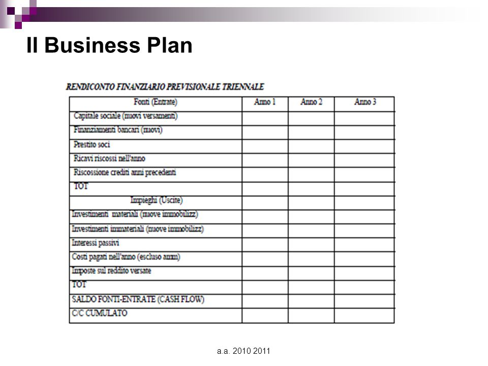 a.a. 2010 2011 Il Business Plan
