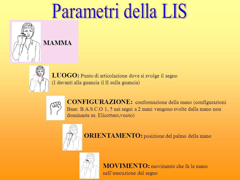 Nella Lis sono stati identificati: - 15 Luoghi - 38 configurazioni - 6 orientamenti - 32 movimenti Segni ad una mano (es.