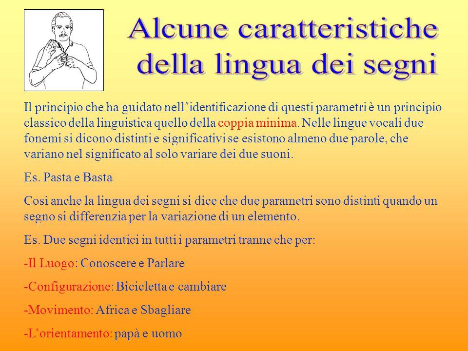 Il principio che ha guidato nell'identificazione di questi parametri è un principio classico della linguistica quello della coppia minima. Nelle lingu