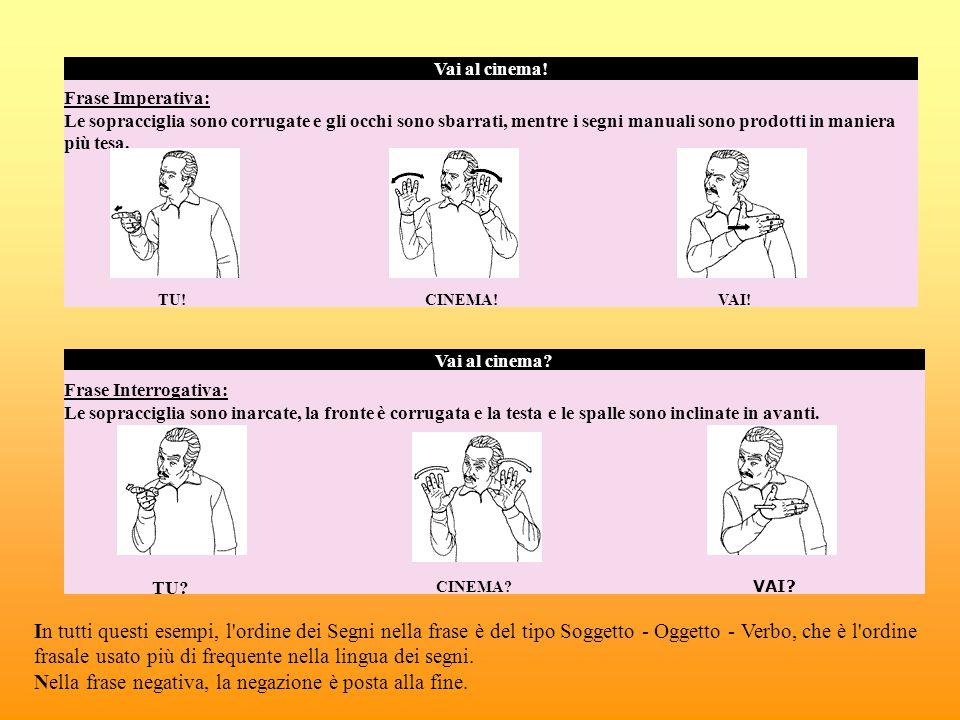 In tutti questi esempi, l'ordine dei Segni nella frase è del tipo Soggetto - Oggetto - Verbo, che è l'ordine frasale usato più di frequente nella ling