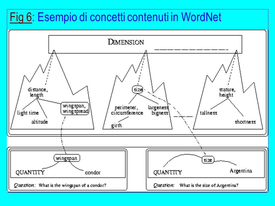 Fig 6Fig 6: Esempio di concetti contenuti in WordNet