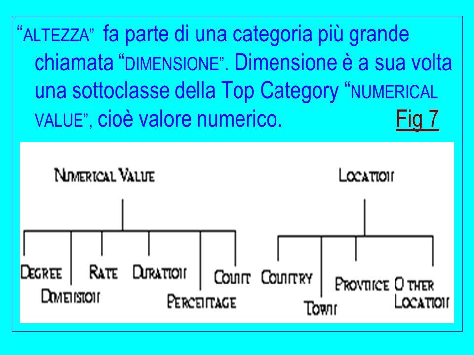 """"""" ALTEZZA"""" fa parte di una categoria più grande chiamata """" DIMENSIONE"""". Dimensione è a sua volta una sottoclasse della Top Category """" NUMERICAL VALUE"""""""