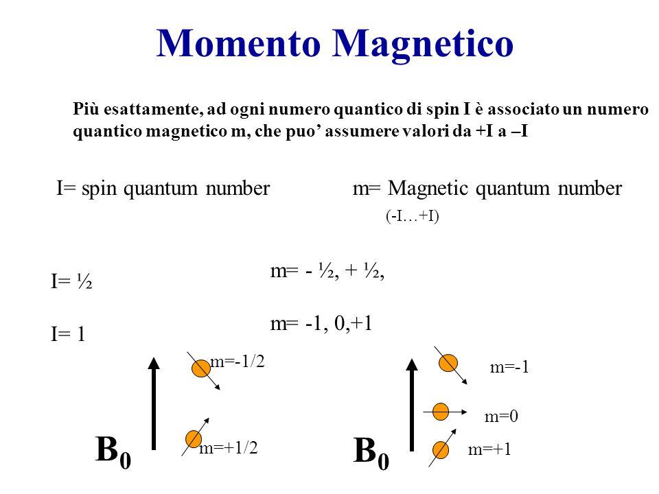 Momento Magnetico I= spin quantum numberm= Magnetic quantum number (-I…+I) Più esattamente, ad ogni numero quantico di spin I è associato un numero quantico magnetico m, che puo' assumere valori da +I a –I I= ½ I= 1 m= - ½, + ½, m= -1, 0,+1 m=+1/2 B0B0 m=-1/2 m=+1 B0B0 m=-1 m=0