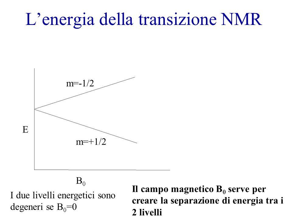 L'energia della transizione NMR B0B0 E m=+1/2 m=-1/2 I due livelli energetici sono degeneri se B 0 =0 Il campo magnetico B 0 serve per creare la separazione di energia tra i 2 livelli