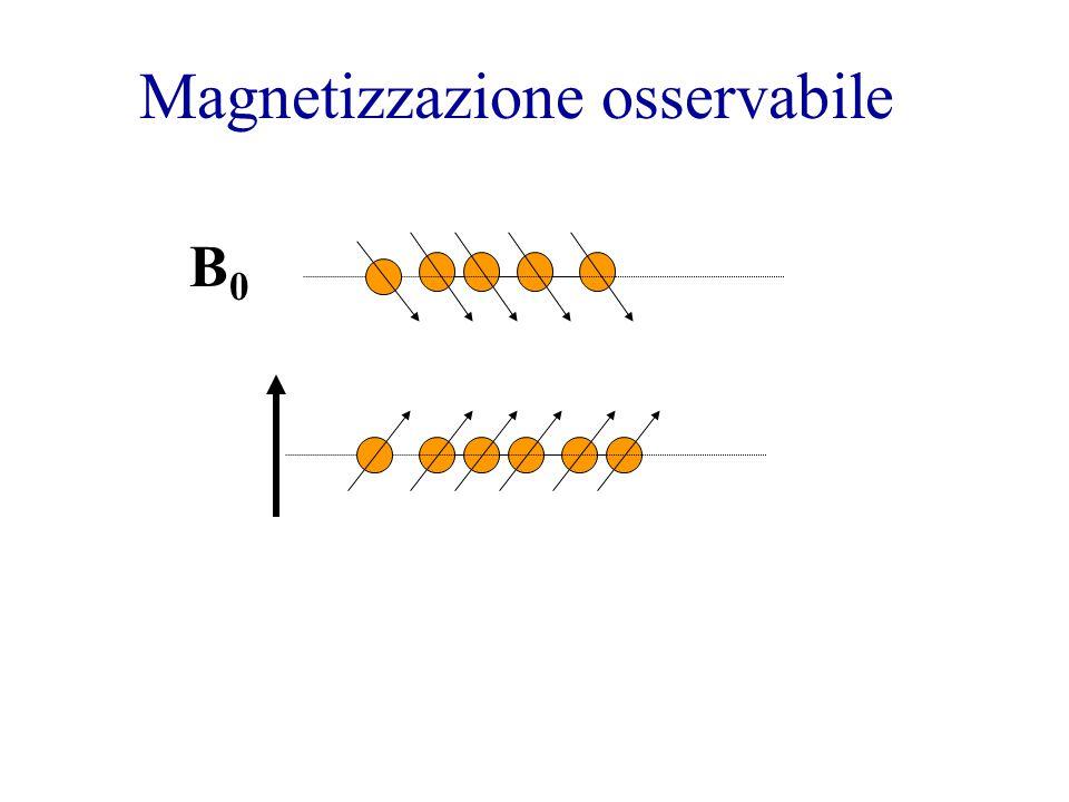 Magnetizzazione osservabile B0B0