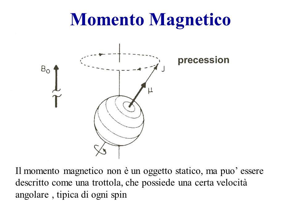 Momento Magnetico Il momento magnetico non è un oggetto statico, ma puo' essere descritto come una trottola, che possiede una certa velocità angolare, tipica di ogni spin