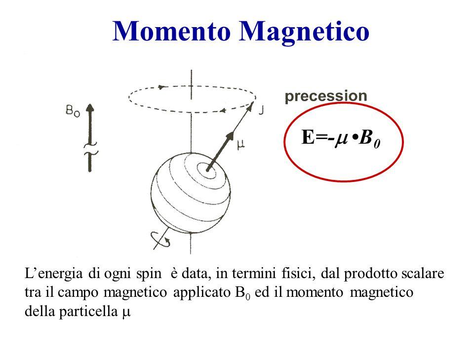 Momento Magnetico L'energia di ogni spin è data, in termini fisici, dal prodotto scalare tra il campo magnetico applicato B 0 ed il momento magnetico della particella  E=-  B 0