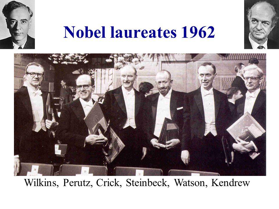 Nobel laureates 1962 Wilkins, Perutz, Crick, Steinbeck, Watson, Kendrew