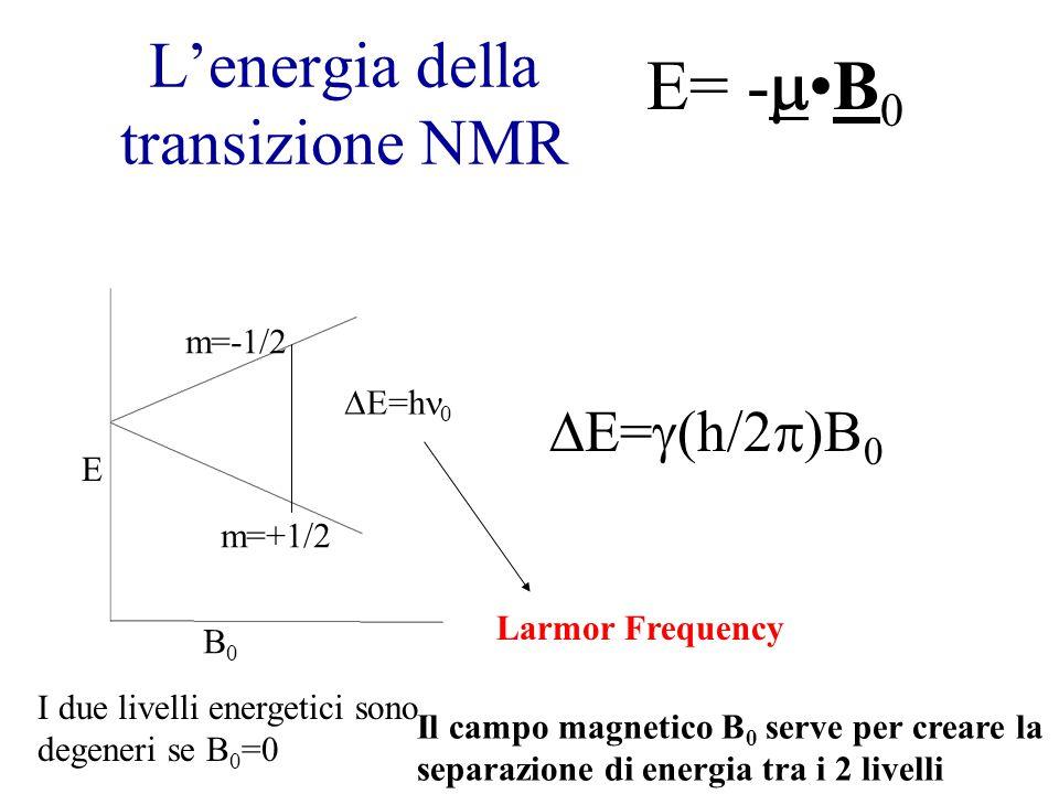 L'energia della transizione NMR B0B0 E m=+1/2 m=-1/2  E=h 0 Larmor Frequency I due livelli energetici sono degeneri se B 0 =0  E=  (h/2  )B 0 E= - B 0 Il campo magnetico B 0 serve per creare la separazione di energia tra i 2 livelli