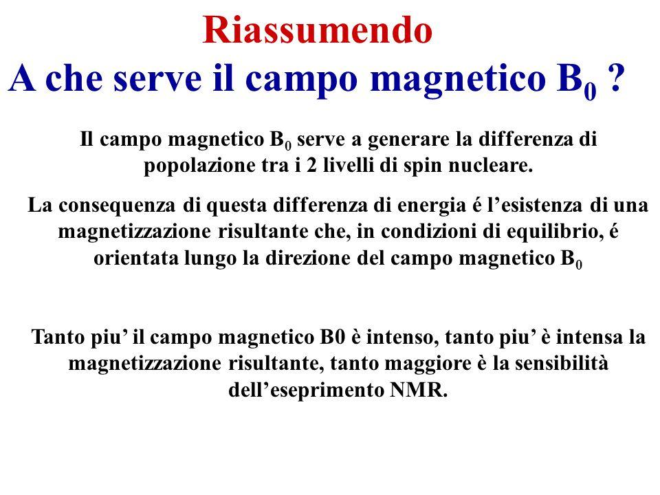 Il campo magnetico B 0 serve a generare la differenza di popolazione tra i 2 livelli di spin nucleare.