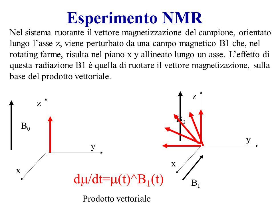 Esperimento NMR Nel sistema ruotante il vettore magnetizzazione del campione, orientato lungo l'asse z, viene perturbato da una campo magnetico B1 che, nel rotating farme, risulta nel piano x y allineato lungo un asse.