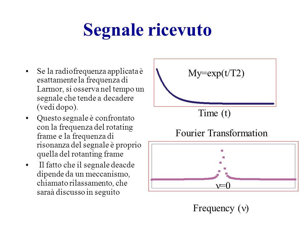 Segnale ricevuto Se la radiofrequenza applicata è esattamente la frequenza di Larmor, si osserva nel tempo un segnale che tende a decadere (vedi dopo).