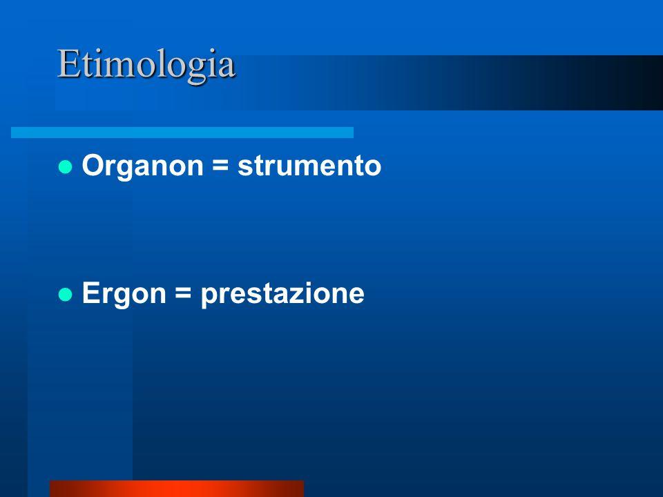 L'Organizzazione Etimologia Definizione Funzioni Origini Diffusione Centralità Tipologie Struttura Processi Separatezza Interazione