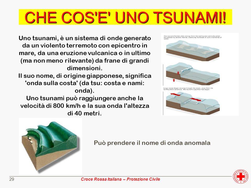________________________________________________________________________________________________ Croce Rossa Italiana – Protezione Civile 29 CHE COS E UNO TSUNAMI.
