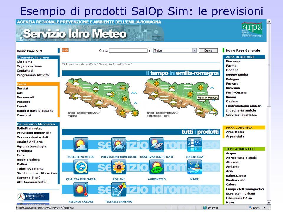 Incontro tra la DG e gli operatori di Arpa-Sim Bologna 10 Dicembre 2007 Esempio di prodotti SalOp Sim: le previsioni