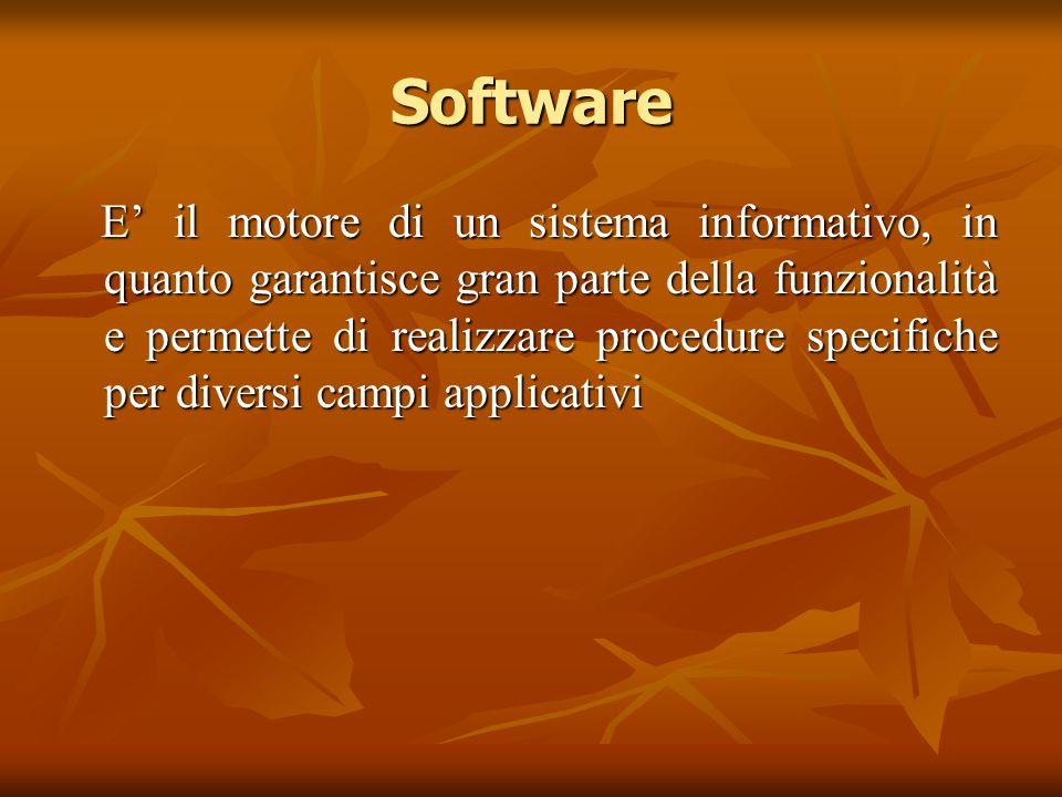 Software E' il motore di un sistema informativo, in quanto garantisce gran parte della funzionalità e permette di realizzare procedure specifiche per