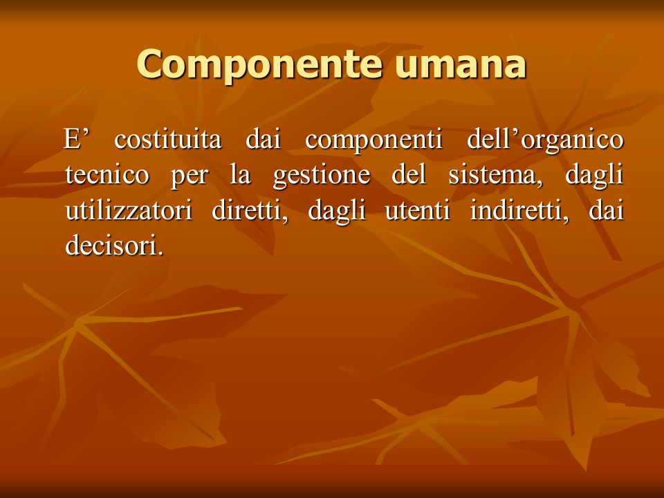 Componente umana E' costituita dai componenti dell'organico tecnico per la gestione del sistema, dagli utilizzatori diretti, dagli utenti indiretti, d
