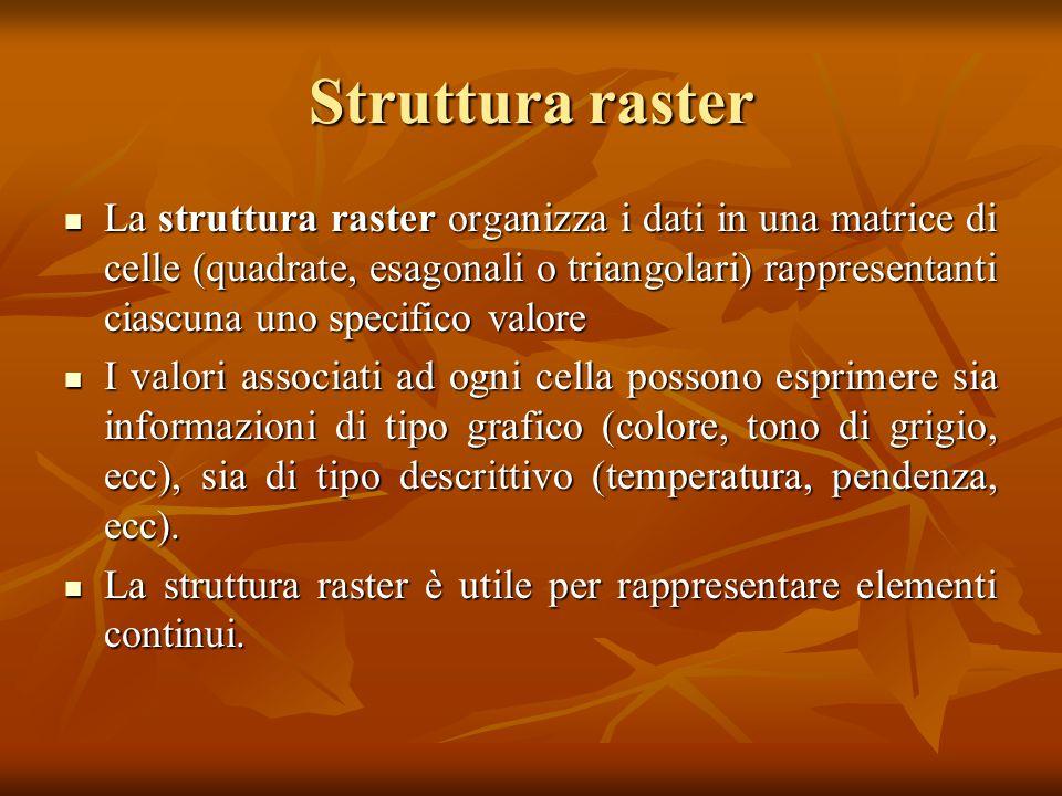 Struttura raster La struttura raster organizza i dati in una matrice di celle (quadrate, esagonali o triangolari) rappresentanti ciascuna uno specific