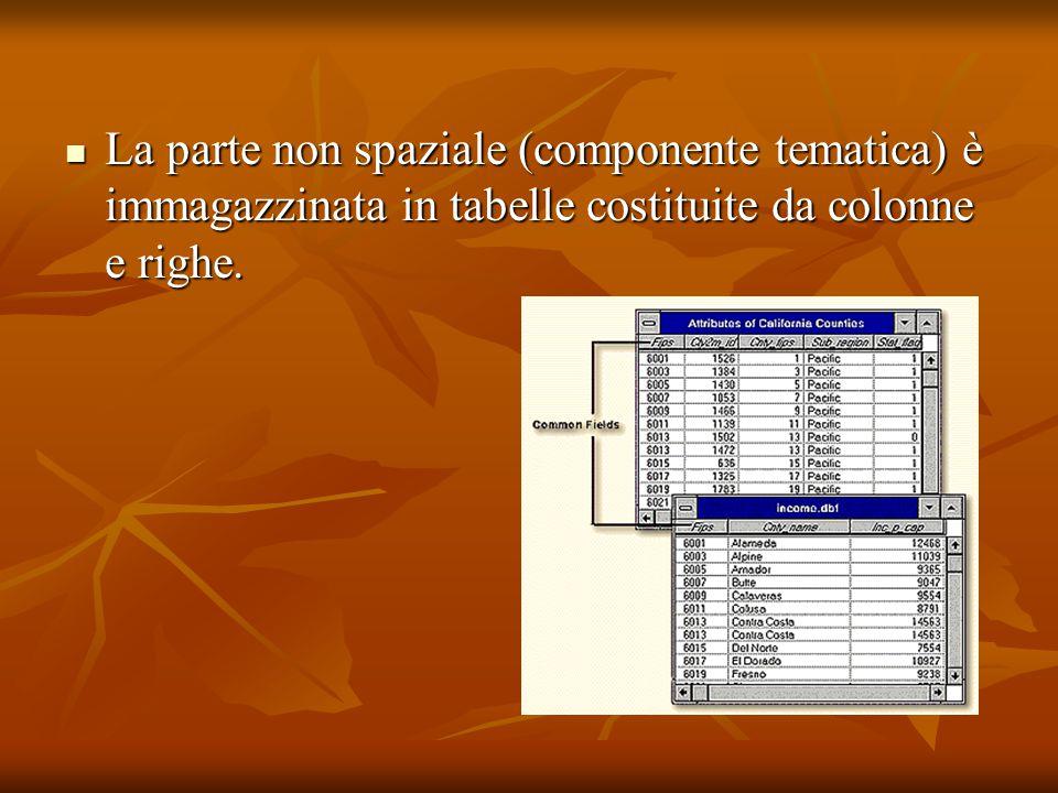 La parte non spaziale (componente tematica) è immagazzinata in tabelle costituite da colonne e righe. La parte non spaziale (componente tematica) è im