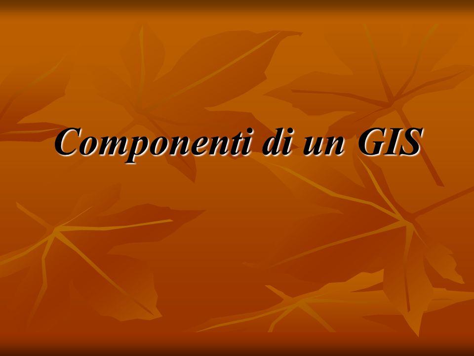 Componenti di un GIS