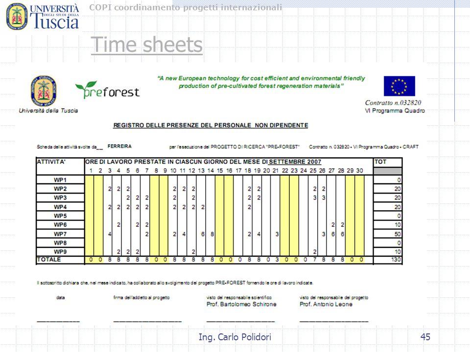 COPI coordinamento progetti internazionali Ing. Carlo Polidori45 Time sheets