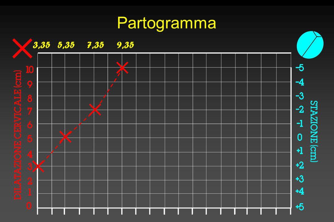Partogramma 3,355,357,359,35