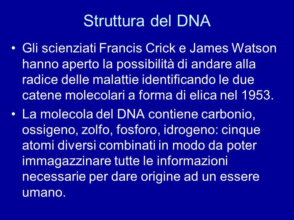 Struttura del DNA Gli scienziati Francis Crick e James Watson hanno aperto la possibilità di andare alla radice delle malattie identificando le due ca