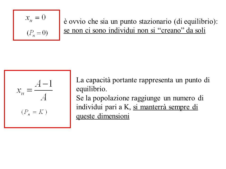 è ovvio che sia un punto stazionario (di equilibrio): se non ci sono individui non si creano da soli La capacità portante rappresenta un punto di equilibrio.
