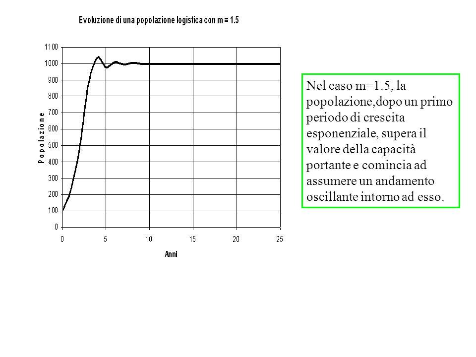 Nel caso m=1.5, la popolazione,dopo un primo periodo di crescita esponenziale, supera il valore della capacità portante e comincia ad assumere un andamento oscillante intorno ad esso.