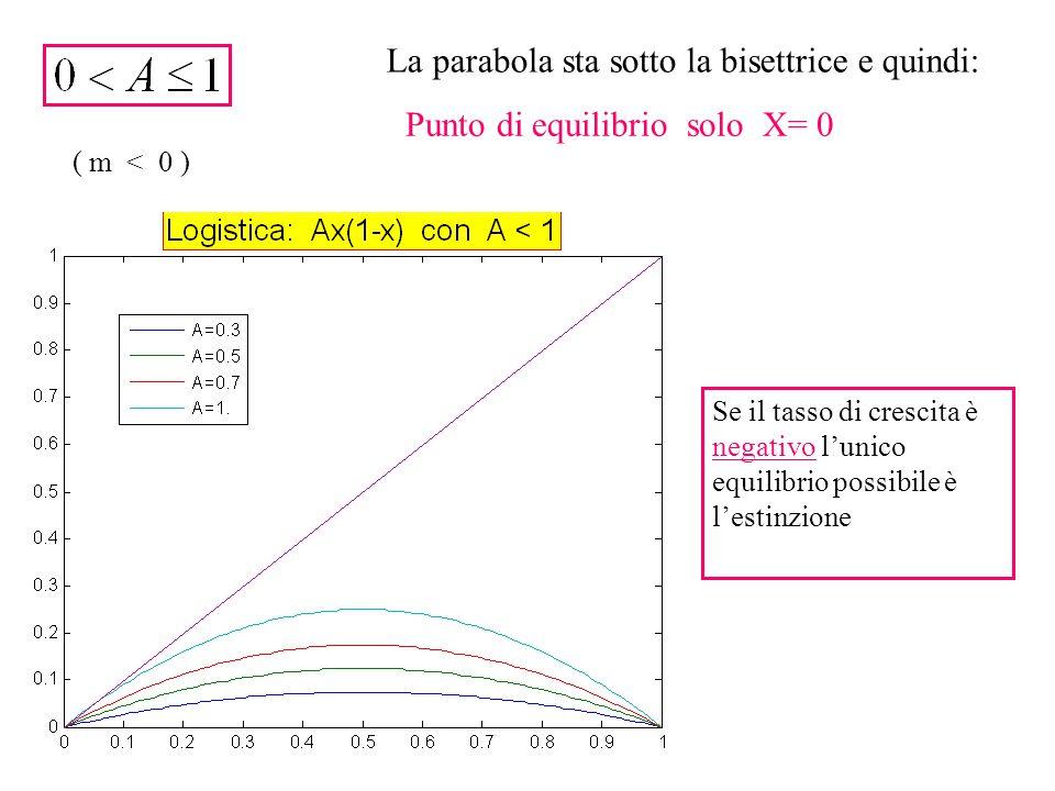 La parabola sta sotto la bisettrice e quindi: Punto di equilibrio solo X= 0 ( m < 0 ) Se il tasso di crescita è negativo l'unico equilibrio possibile è l'estinzione